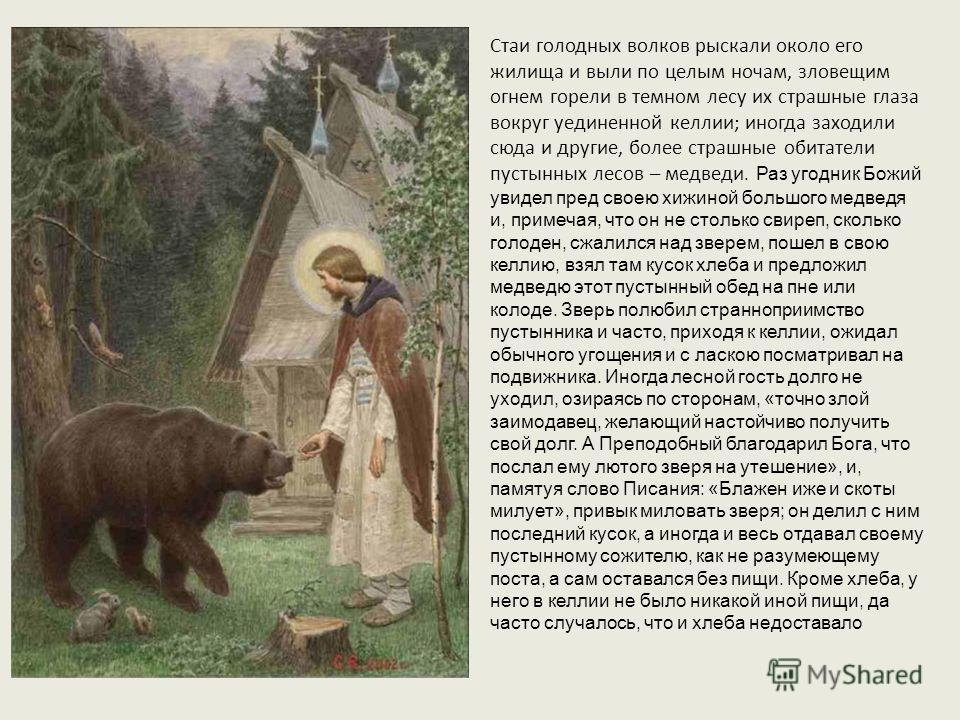 Стаи голодных волков рыскали около его жилища и выли по целым ночам, зловещим огнем горели в темном лесу их страшные глаза вокруг уединенной келлии; иногда заходили сюда и другие, более страшные обитатели пустынных лесов – медведи. Раз угодник Божий