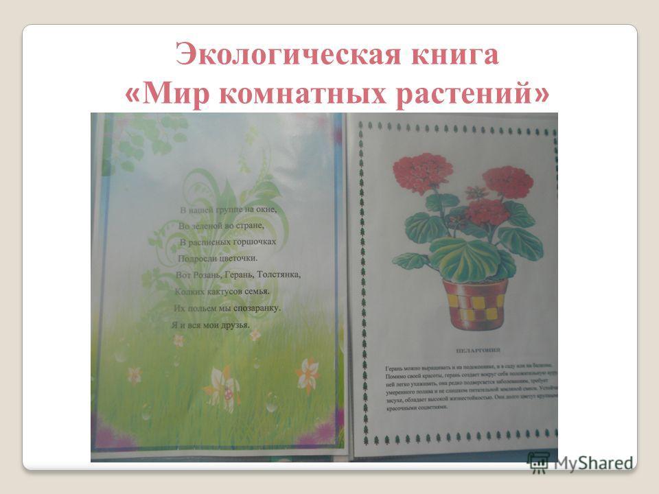 Наблюдения за комнатными растениями картотека  Окружающий мир