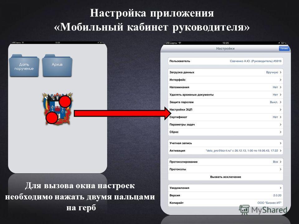 Настройка приложения «Мобильный кабинет руководителя» Для вызова окна настроек необходимо нажать двумя пальцами на герб