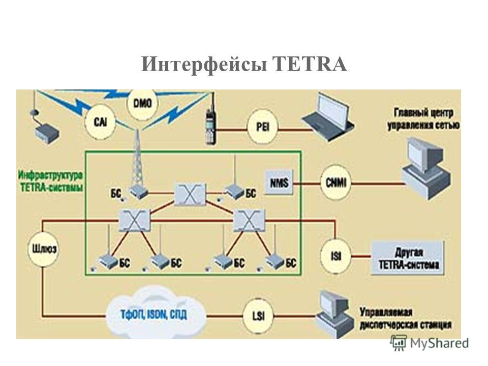 tetra traits for efficient human recognition The approach developed by arl preserves identity information to enhance discriminability, for example, increased recognition accuracy for both automatic face recognition algorithms and human.
