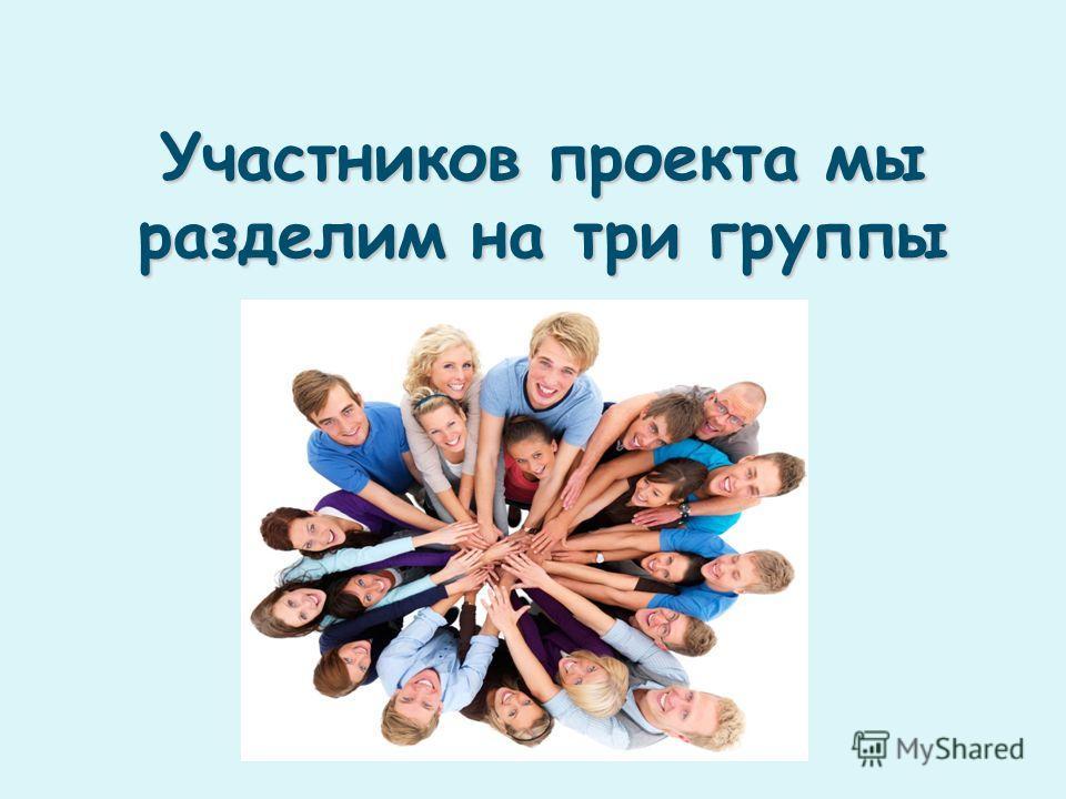 Участников проекта мы разделим на три группы