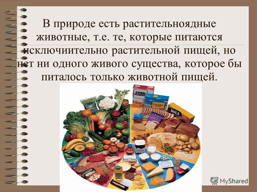 В природе есть растительноядные животные, т.е. те, которые питаются исключиительно растительной пищей, но нет ни одного живого существа, которое бы питалось только животной пищей.