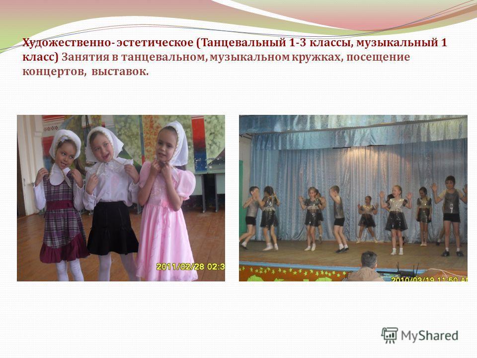 Художественно- эстетическое (Танцевальный 1-3 классы, музыкальный 1 класс) Занятия в танцевальном, музыкальном кружках, посещение концертов, выставок.