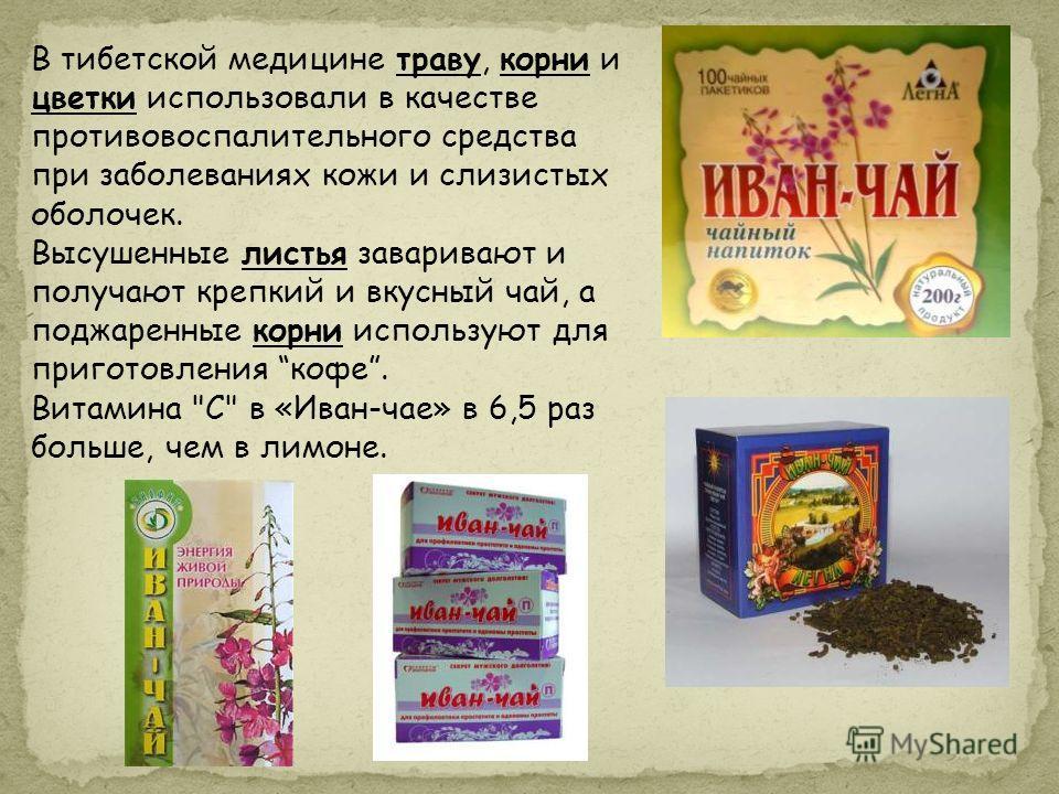 В тибетской медицине траву, корни и цветки использовали в качестве противовоспалительного средства при заболеваниях кожи и слизистых оболочек. Высушенные листья заваривают и получают крепкий и вкусный чай, а поджаренные корни используют для приготовл