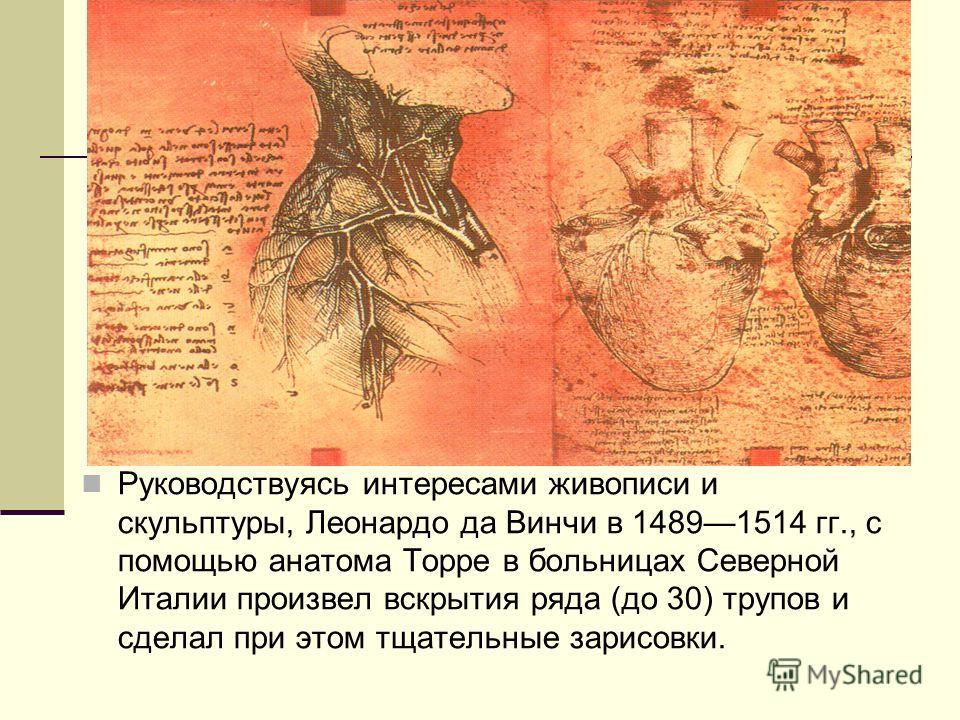 Руководствуясь интересами живописи и скульптуры, Леонардо да Винчи в 14891514 гг., с помощью анатома Торре в больницах Северной Италии произвел вскрытия ряда (до 30) трупов и сделал при этом тщательные зарисовки.