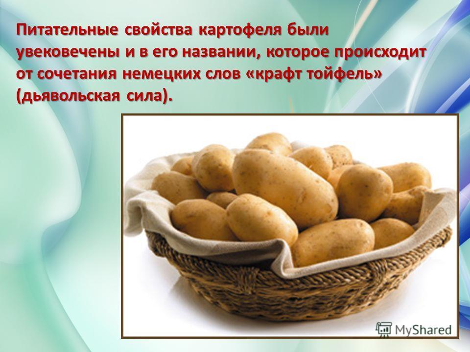 Питательные свойства картофеля были увековечены и в его названии, которое происходит от сочетания немецких слов «крафт тойфель» (дьявольская сила).