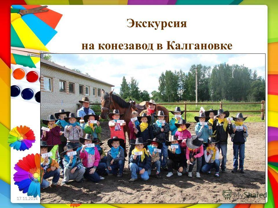 Экскурсия на конезавод в Калгановке
