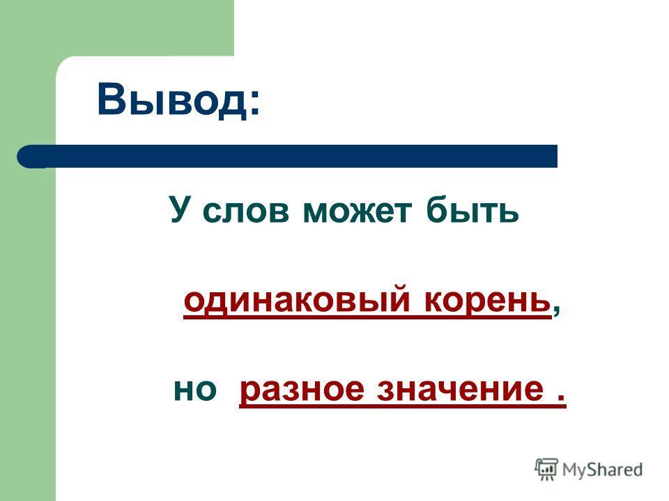 Вывод: У слов может быть одинаковый корень, но разное значение.