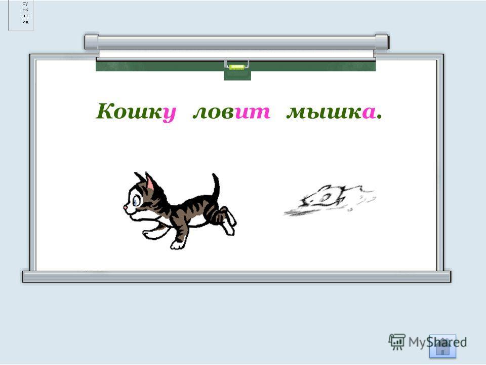 Кошку ловит мышка.