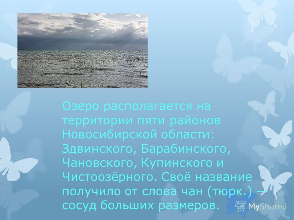Озеро располагается на территории пяти районов Новосибирской области: Здвинского, Барабинского, Чановского, Купинского и Чистоозёрного. Своё название получило от слова чан (тюрк.) сосуд больших размеров.