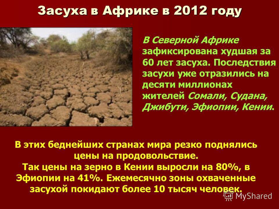 Засуха в Африке в 2012 году В Северной Африке зафиксирована худшая за 60 лет засуха. Последствия засухи уже отразились на десяти миллионах жителей Сомали, Судана, Джибути, Эфиопии, Кении. В этих беднейших странах мира резко поднялись цены на продовол