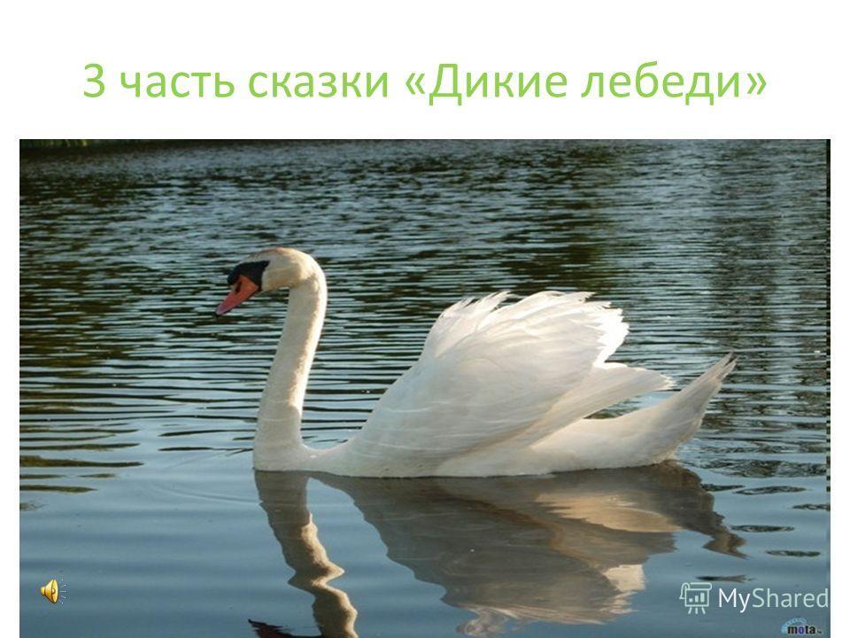 3 часть сказки «Дикие лебеди»