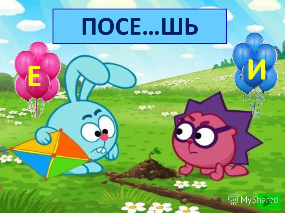 БОРМОЧ…Т 16 А У