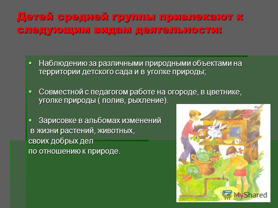 Детей средней группы привлекают к следующим видам деятельности: Наблюдению за различными природными объектами на территории детского сада и в уголке природы; Наблюдению за различными природными объектами на территории детского сада и в уголке природы