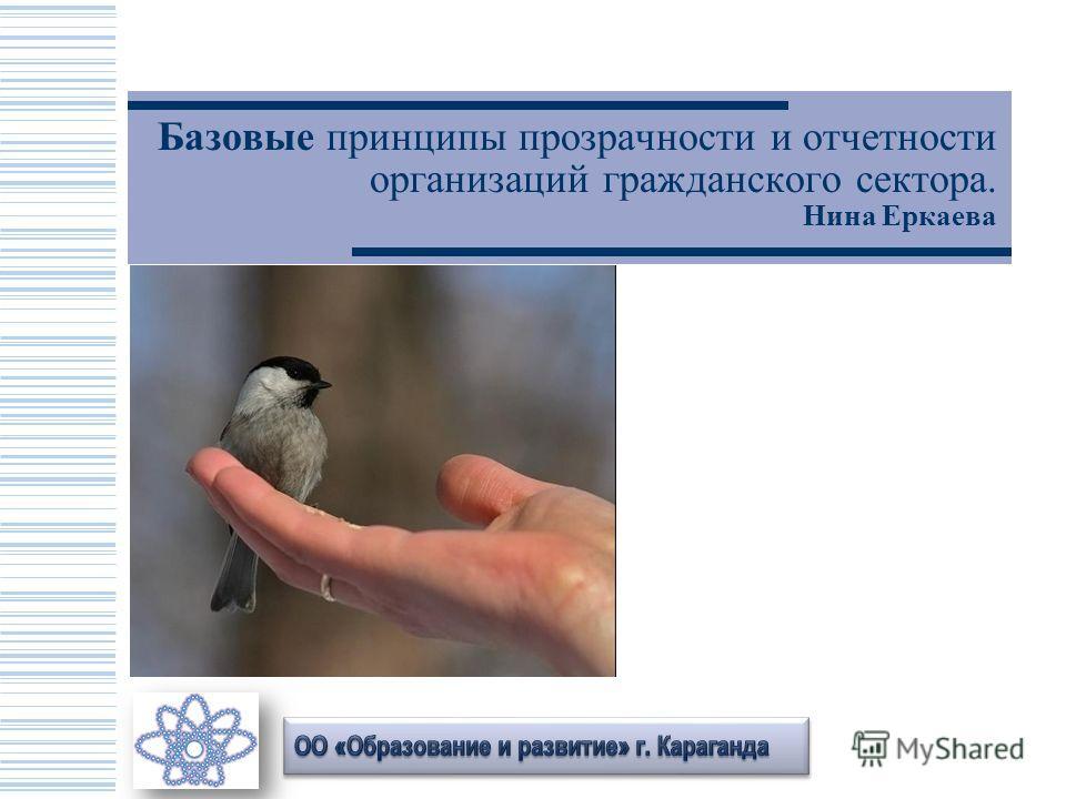 Базовые принципы прозрачности и отчетности организаций гражданского сектора. Нина Еркаева