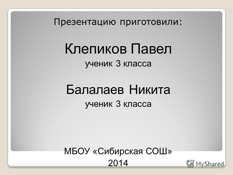 Презентацию приготовили: Клепиков Павел ученик 3 класса Балалаев Никита ученик 3 класса МБОУ «Сибирская СОШ» 2014