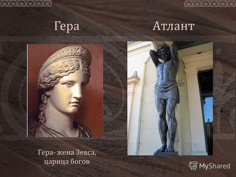 Гера Гера- жена Зевса, царица богов Атлант