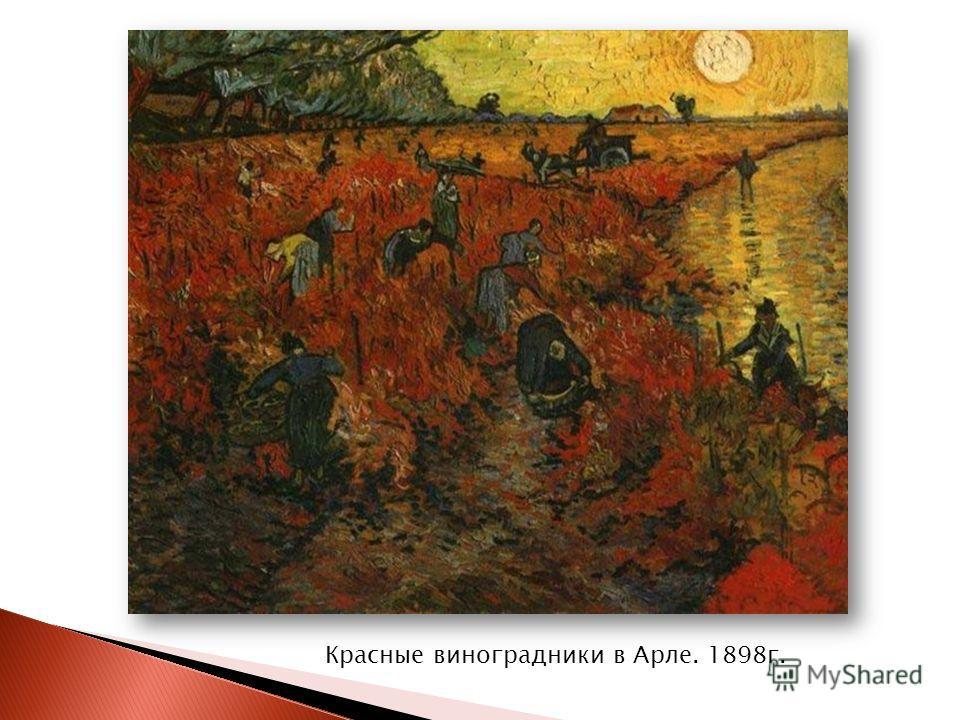 Красные виноградники в Арле. 1898 г.