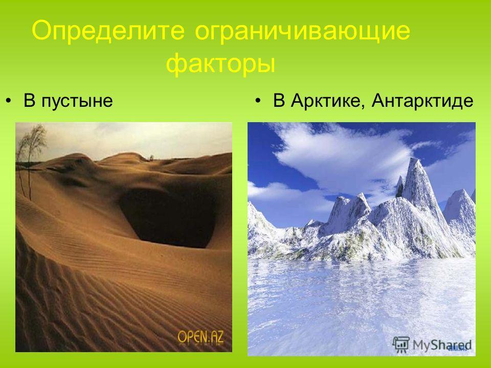 Определите ограничивающие факторы В пустынеВ Арктике, Антарктиде