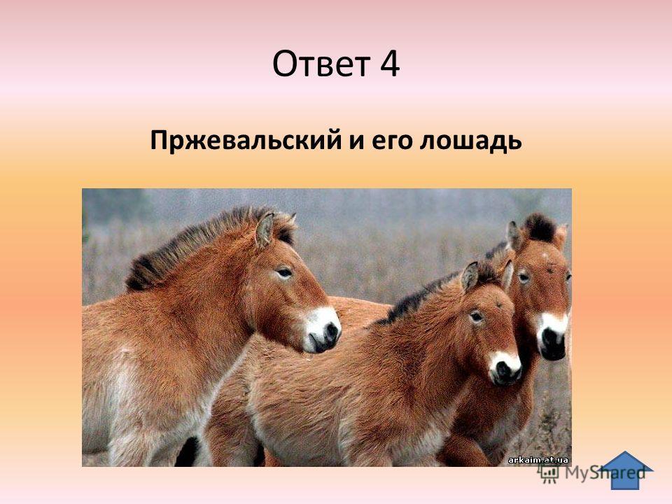 Ответ 4 Пржевальский и его лошадь
