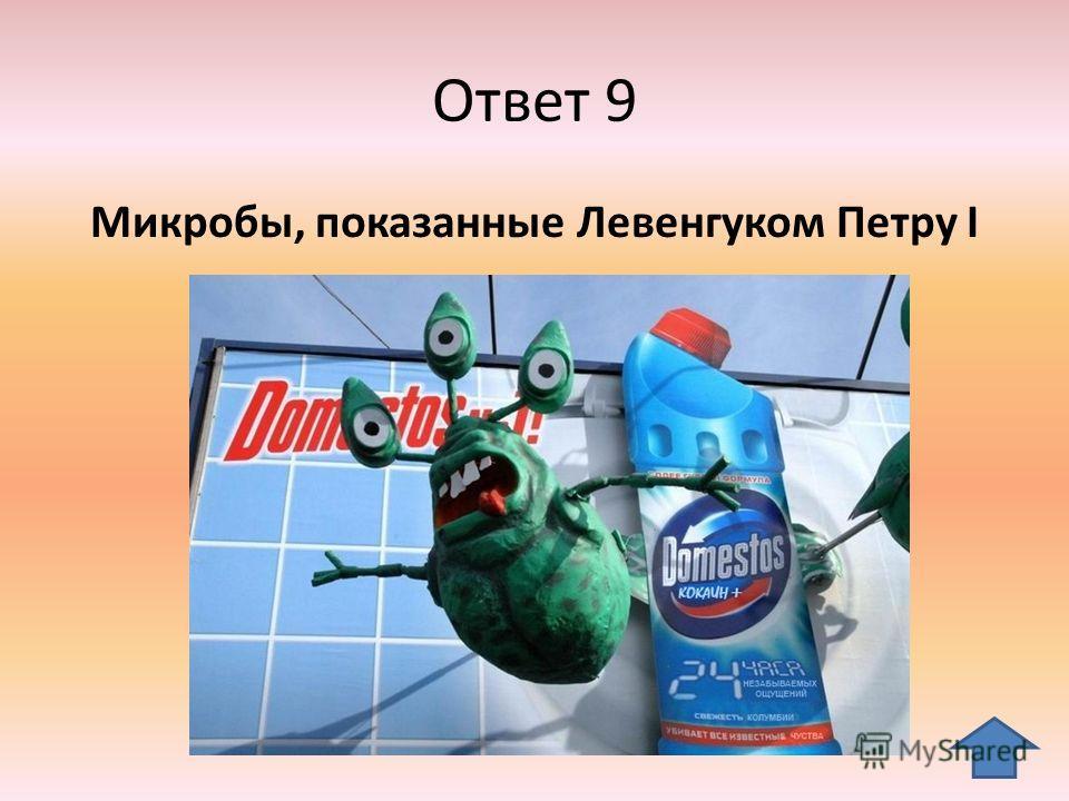 Ответ 9 Микробы, показанные Левенгуком Петру I