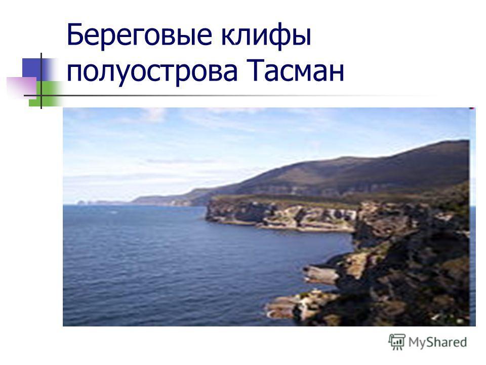 Береговые клифы полуострова Тасман