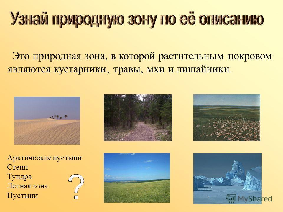 Это природная зона, в которой растительным покровом являются кустарники, травы, мхи и лишайники. Арктические пустыни Степи Тундра Лесная зона Пустыни