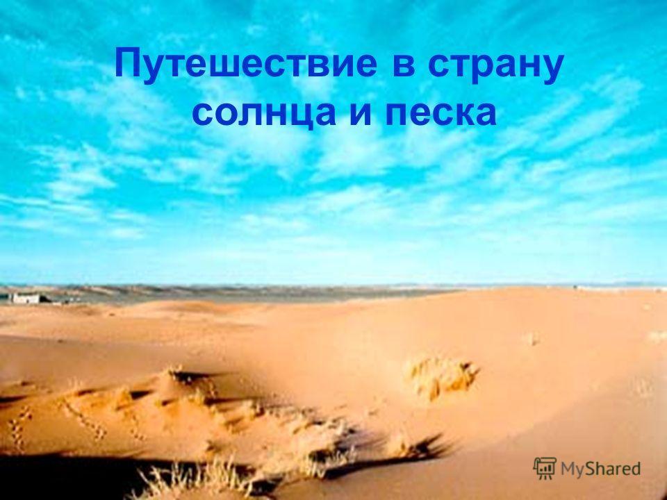 Путешествие в страну солнца и песка