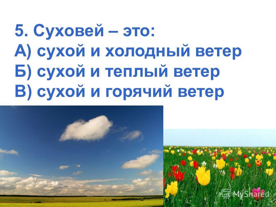 5. Суховей – это: А) сухой и холодный ветер Б) сухой и теплый ветер В) сухой и горячий ветер