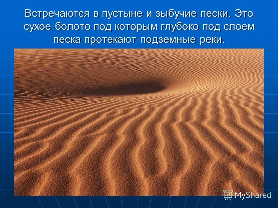 Встречаются в пустыне и зыбучие пески. Это сухое болото под которым глубоко под слоем песка протекают подземные реки.