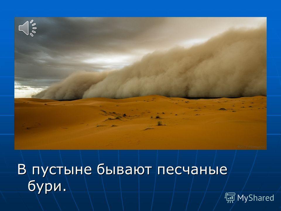 В пустыне бывают песчаные бури.