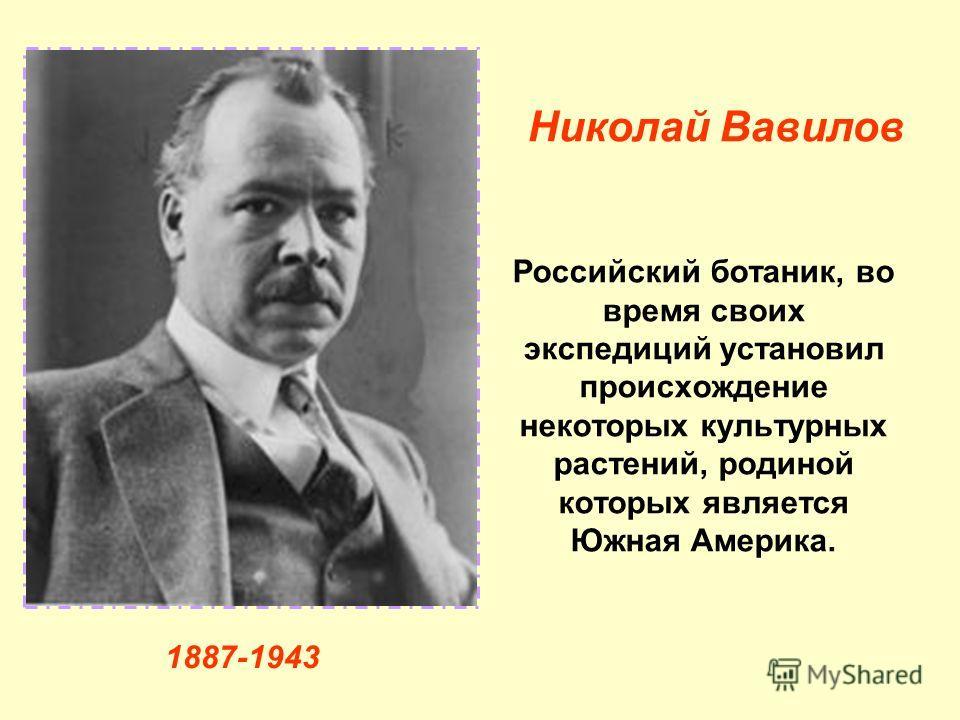 Российский ботаник, во время своих экспедиций установил происхождение некоторых культурных растений, родиной которых является Южная Америка. Николай Вавилов 1887-1943