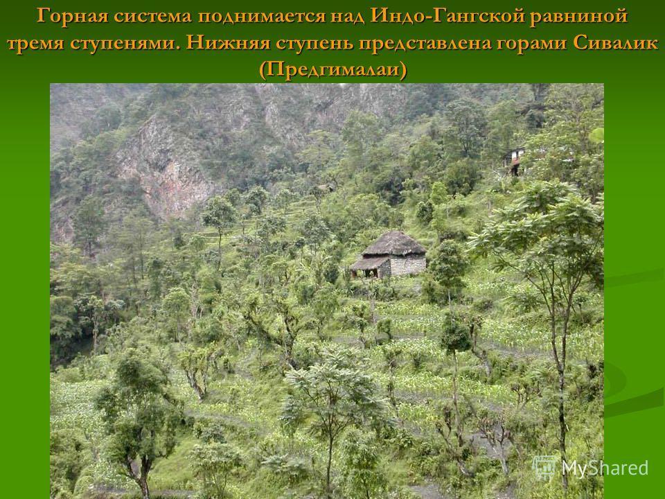 Горная система поднимается над Индо-Гангской равниной тремя ступенями. Нижняя ступень представлена горами Сивалик (Предгималаи)