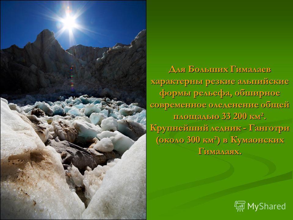 Для Больших Гималаев характерны резкие альпийские формы рельефа, обширное современное оледенение общей площадью 33 200 км². Крупнейший ледник - Ганготри (около 300 км²) в Кумаонских Гималаях.