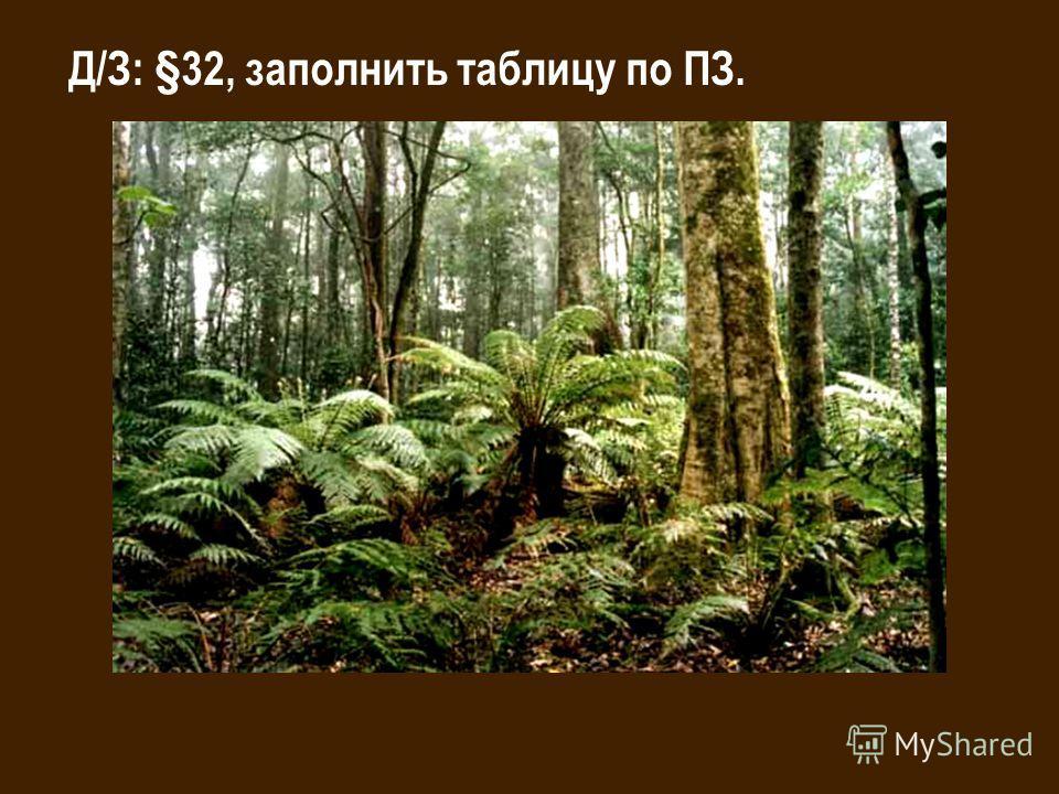 Д/З: §32, заполнить таблицу по ПЗ.