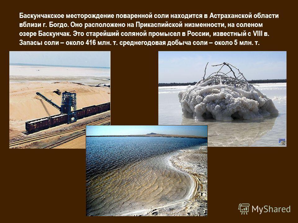 Баскунчакское месторождение поваренной соли находится в Астраханской области вблизи г. Богдо. Оно расположено на Прикаспийской низменности, на соленом озере Баскунчак. Это старейший соляной промысел в России, известный с VIII в. Запасы соли – около 4