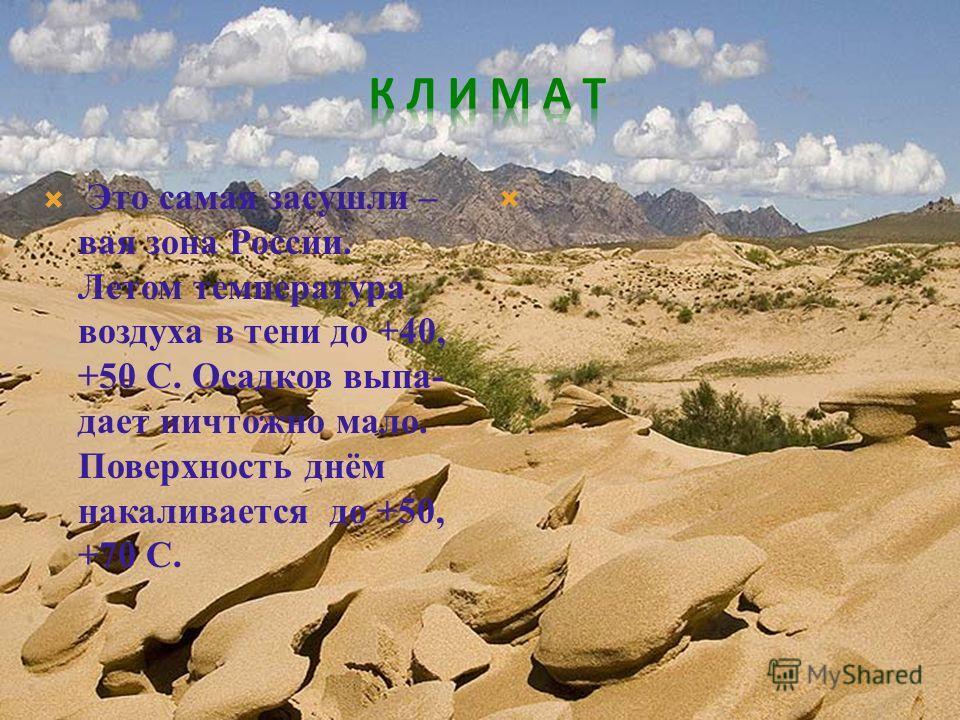 Это самая засушливая зона России. Летом температура воздуха в тени до +40, +50 C. Осадков выпадает ничтожно мало. Поверхность днём накаливается до +50, +70 С.