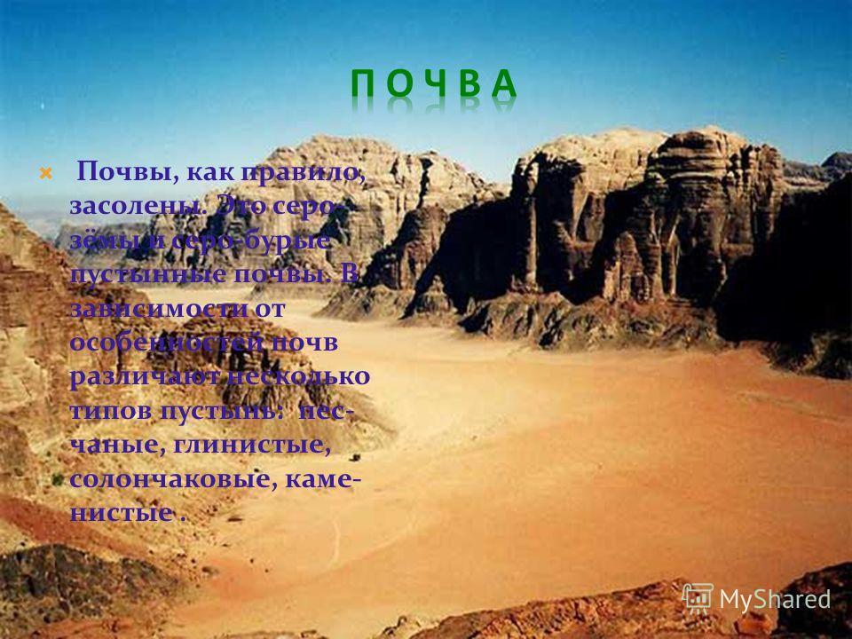 Почвы, как правило, засолены. Это серо- зимы и серо-бурые пустынные почвы. В зависимости от особенностей почв различают несколько типов пустынь: песчаные, глинистые, солончаковые, каменистые.