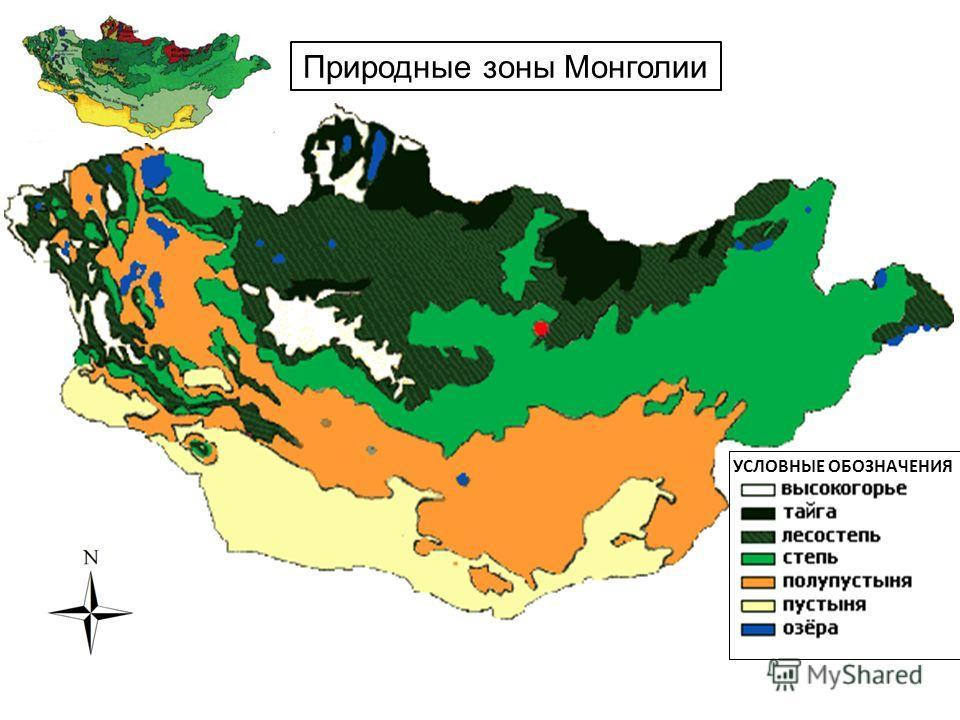 Природные зоны Монголии УСЛОВНЫЕ ОБОЗНАЧЕНИЯ