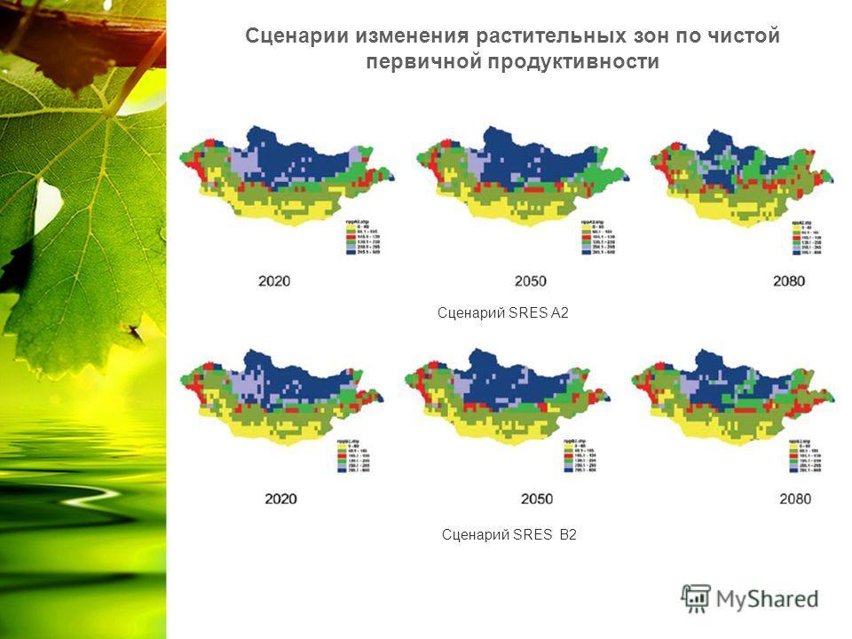Сценарий SRES A2 Сценарий SRES B2 Сценарии изменения растительных зон по чистой первичной продуктивности