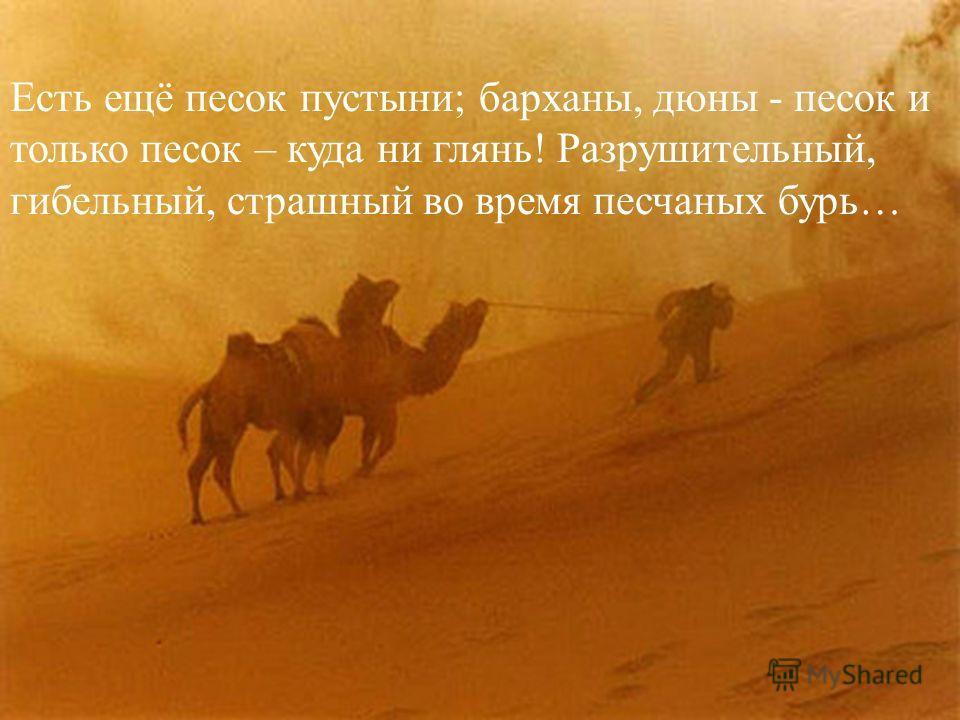 Есть ещё песок пустыни; барханы, дюны - песок и только песок – куда ни глянь! Разрушительный, гибельный, страшный во время песчаных бурь…