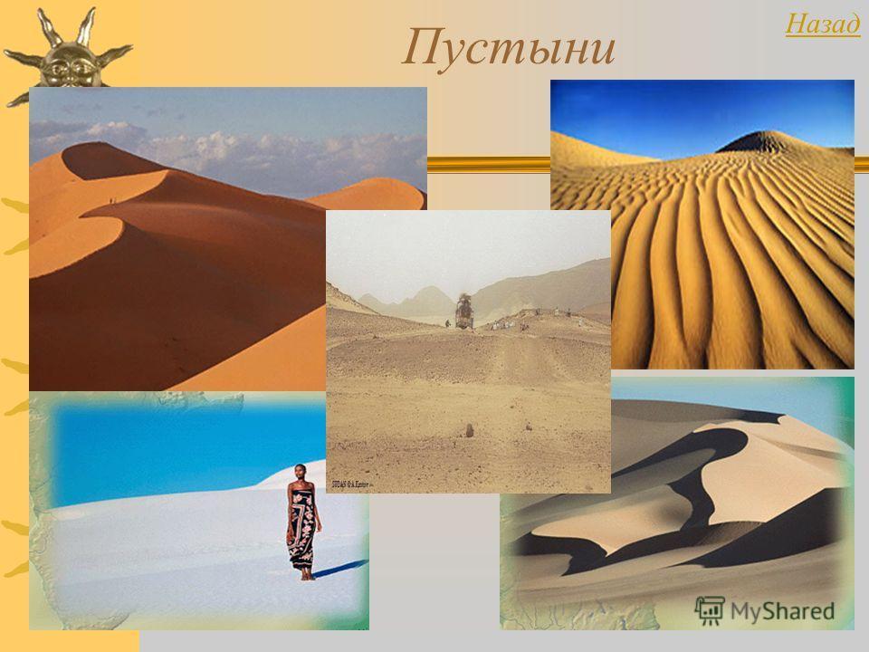 Пустыни Назад