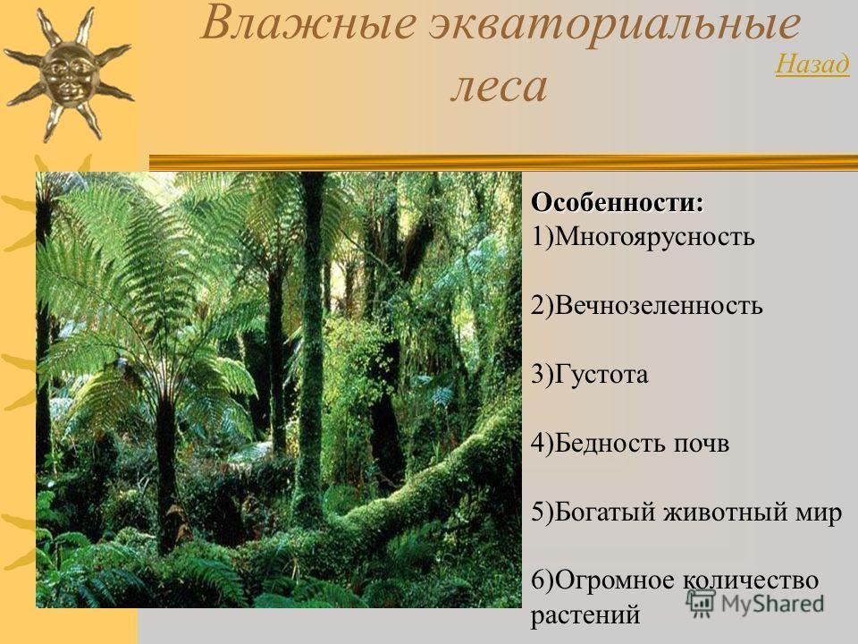 Влажные экваториальные леса Особенности: 1)Многоярусность 2)Вечнозеленность 3)Густота 4)Бедность почв 5)Богатый животный мир 6)Огромное количество растений Назад