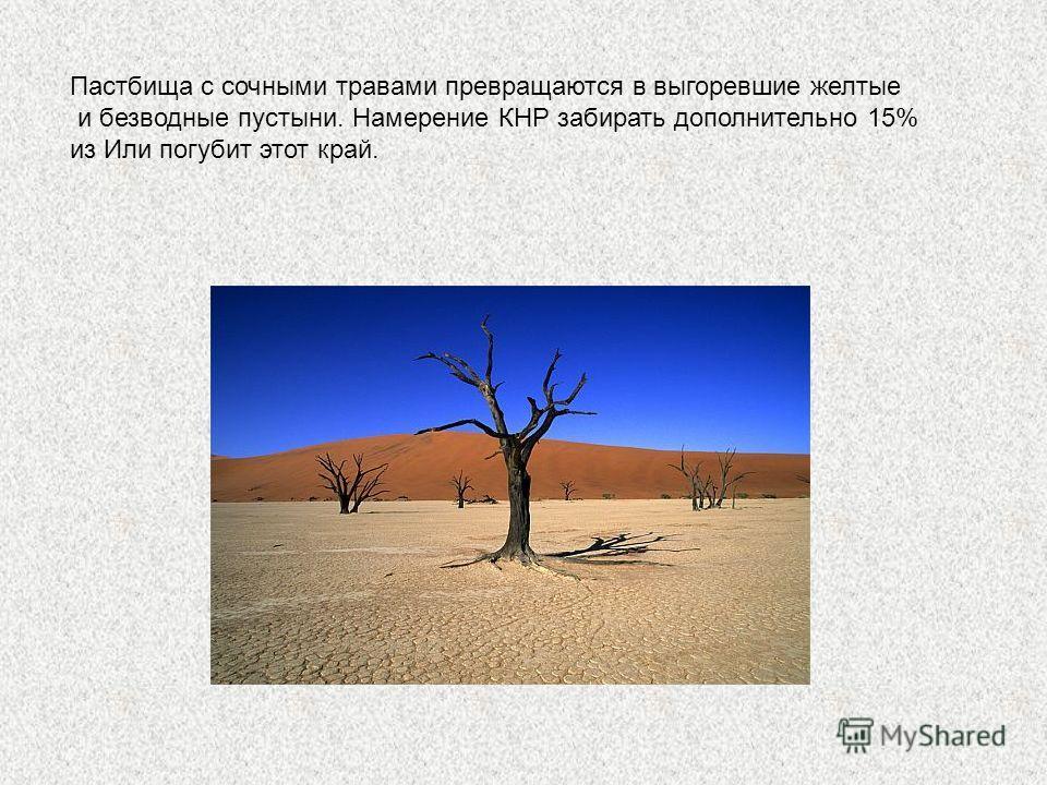 Пастбища с сочными травами превращаются в выгоревшие желтые и безводные пустыни. Намерение КНР забирать дополнительно 15% из Или погубит этот край.