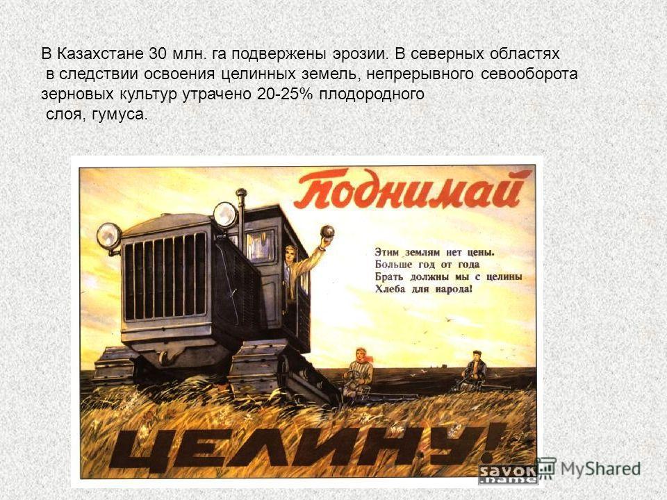 В Казахстане 30 млн. га подвержены эрозии. В северных областях в следствии освоения целинных земель, непрерывного севооборота зерновых культур утрачено 20-25% плодородного слоя, гумуса.