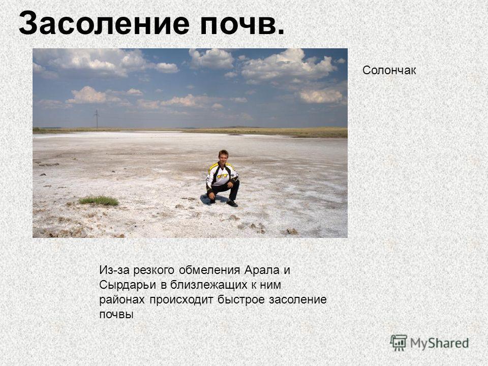 Засоление почв. Солончак Из-за резкого обмеления Арала и Сырдарьи в близлежащих к ним районах происходит быстрое засоление почвы