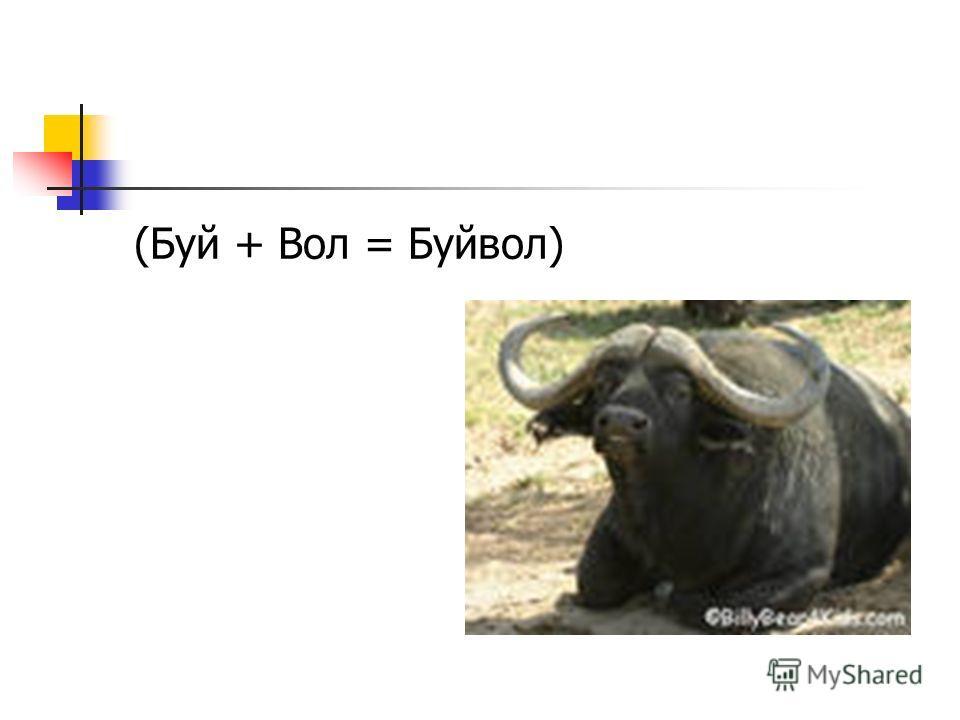 (Буй + Вол = Буйвол)