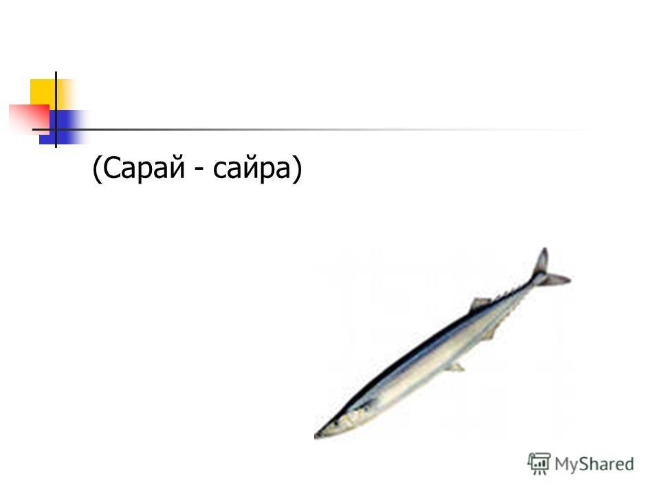 (Сарай - сайра)