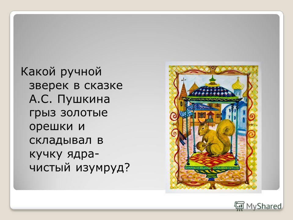 Какой ручной зверек в сказке А.С. Пушкина грыз золотые орешки и складывал в кучку ядра- чистый изумруд?