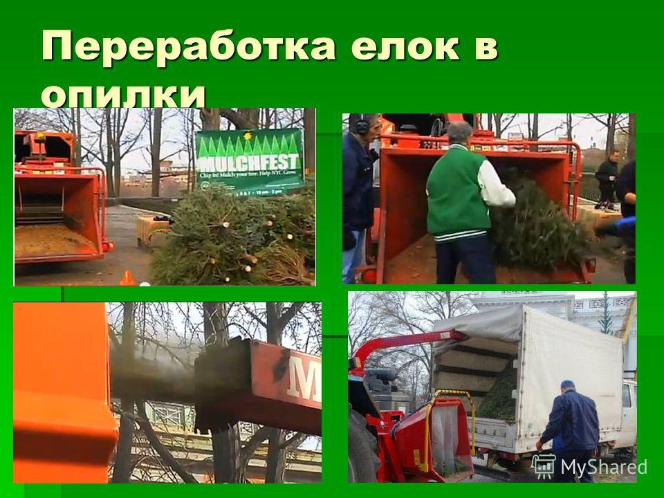Переработка елок в опилки